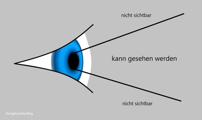 Auge Strahl.jpg